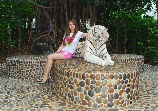 CROCODILE FARM (THE MILLION YEARS STONE PARK), Pattaya
